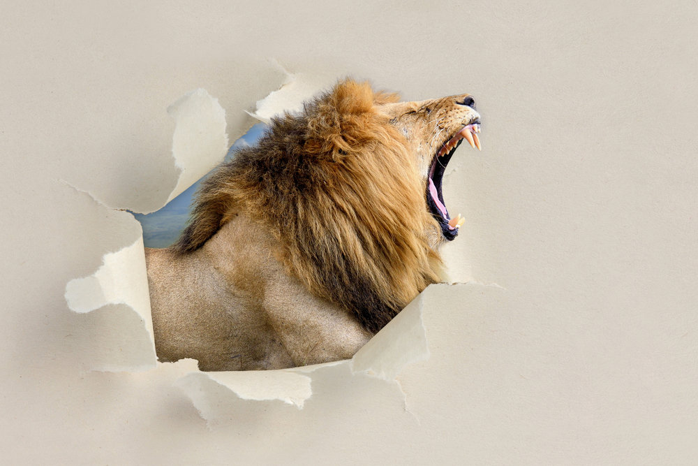 lion breaking thru paper.jpeg