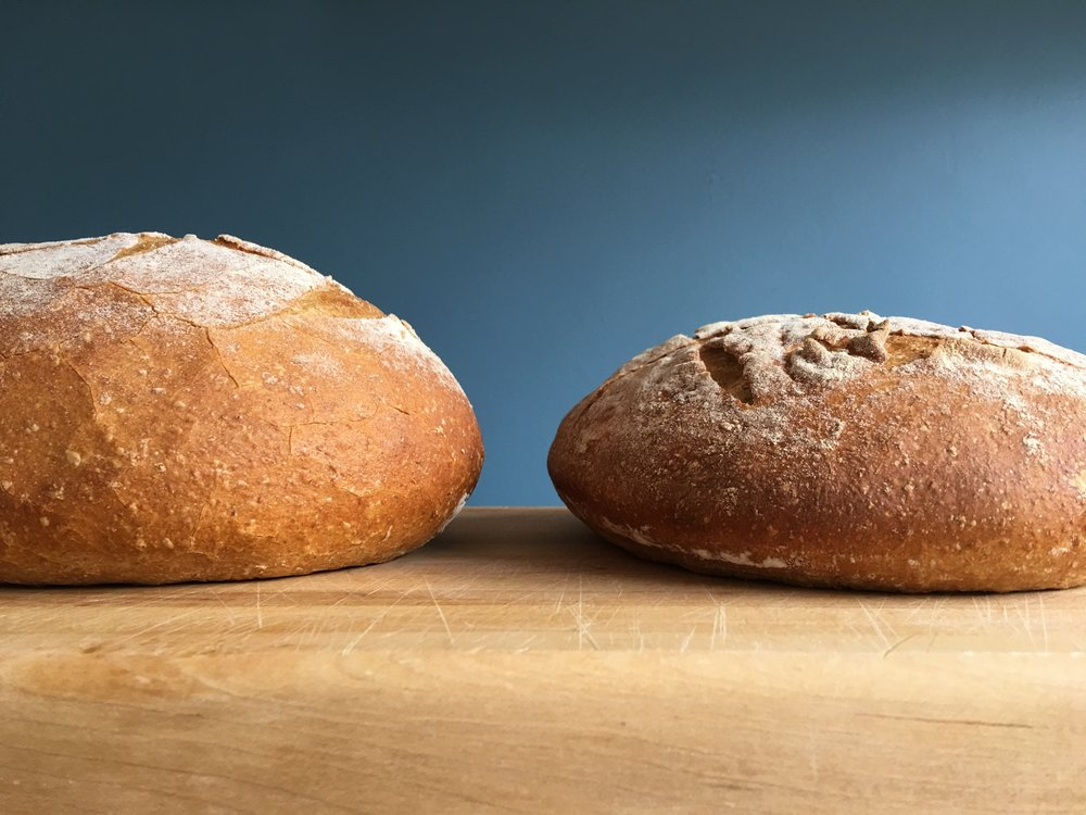 Watch Next: - Bread Tip 24: How to Stop your Dough from Spreading Out Flat