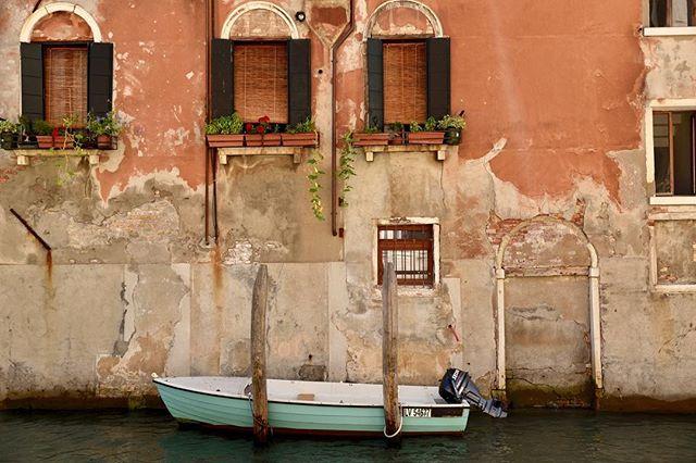 Magical Venezia 💛 • ∙ • ∙  #photographylovers #picoftheday #pictureoftheday #pictureperfect #nikond750 #nikon #nikonphotographer #travelphotography #travel #travels #travelers #london #travelphotographer #travelphoto #travelphotos #brennaboatphotography  #amalfi #amalficoast #amalficoastitaly #visitamalfi #visititaly #italy #italian #summer #ocean #italytravel #igitalia #italy_vacations #italyiloveyou