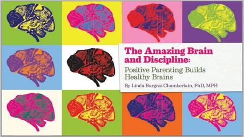 Amazing Brain Discipline Snip.JPG