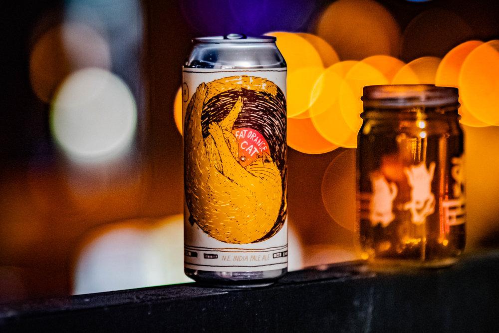 Launch- Fat Orange Cat Brewing.jpg