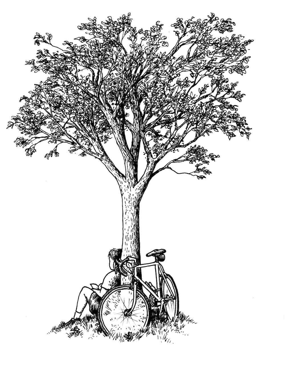 Tree-Sitter_med.jpg