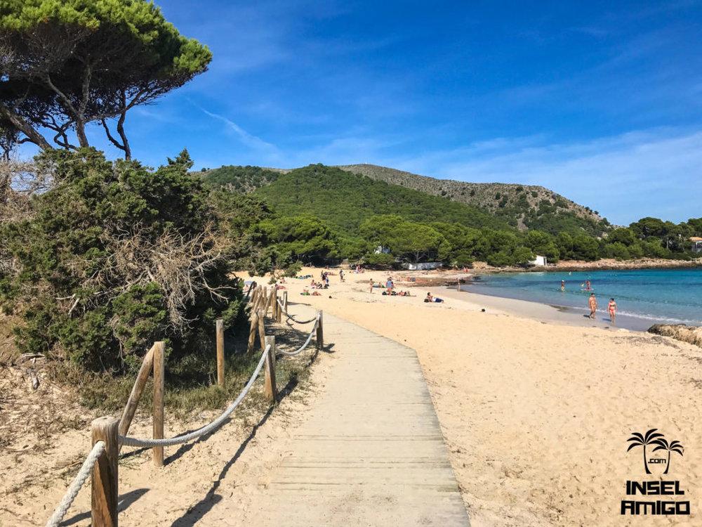 Der Strand der Cala Agulla