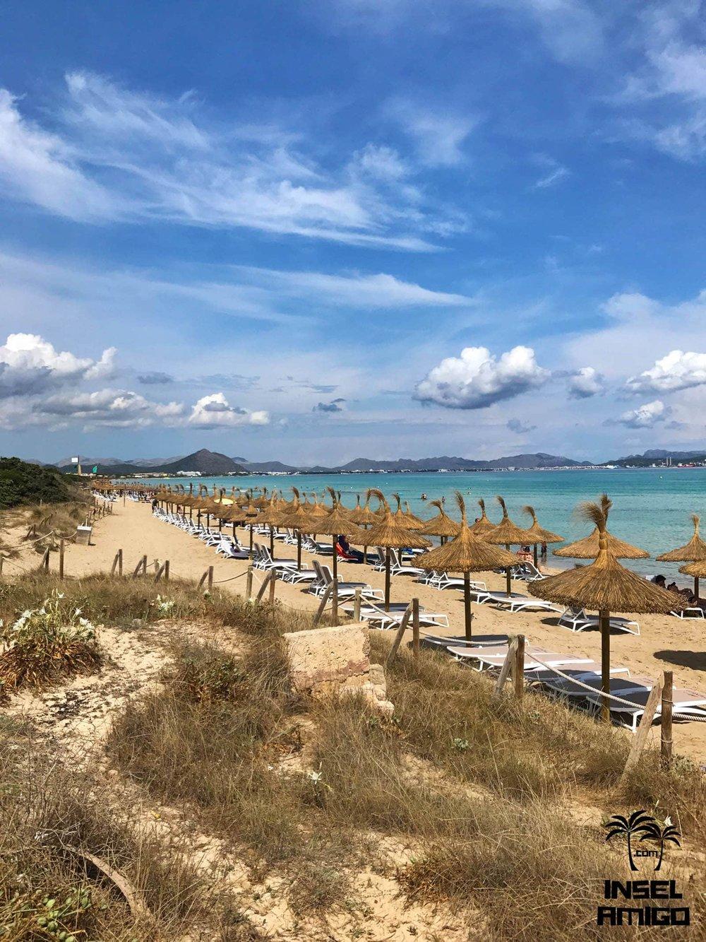 Blick auf die Playa de Muro vom Restaurant Can Gavella aus