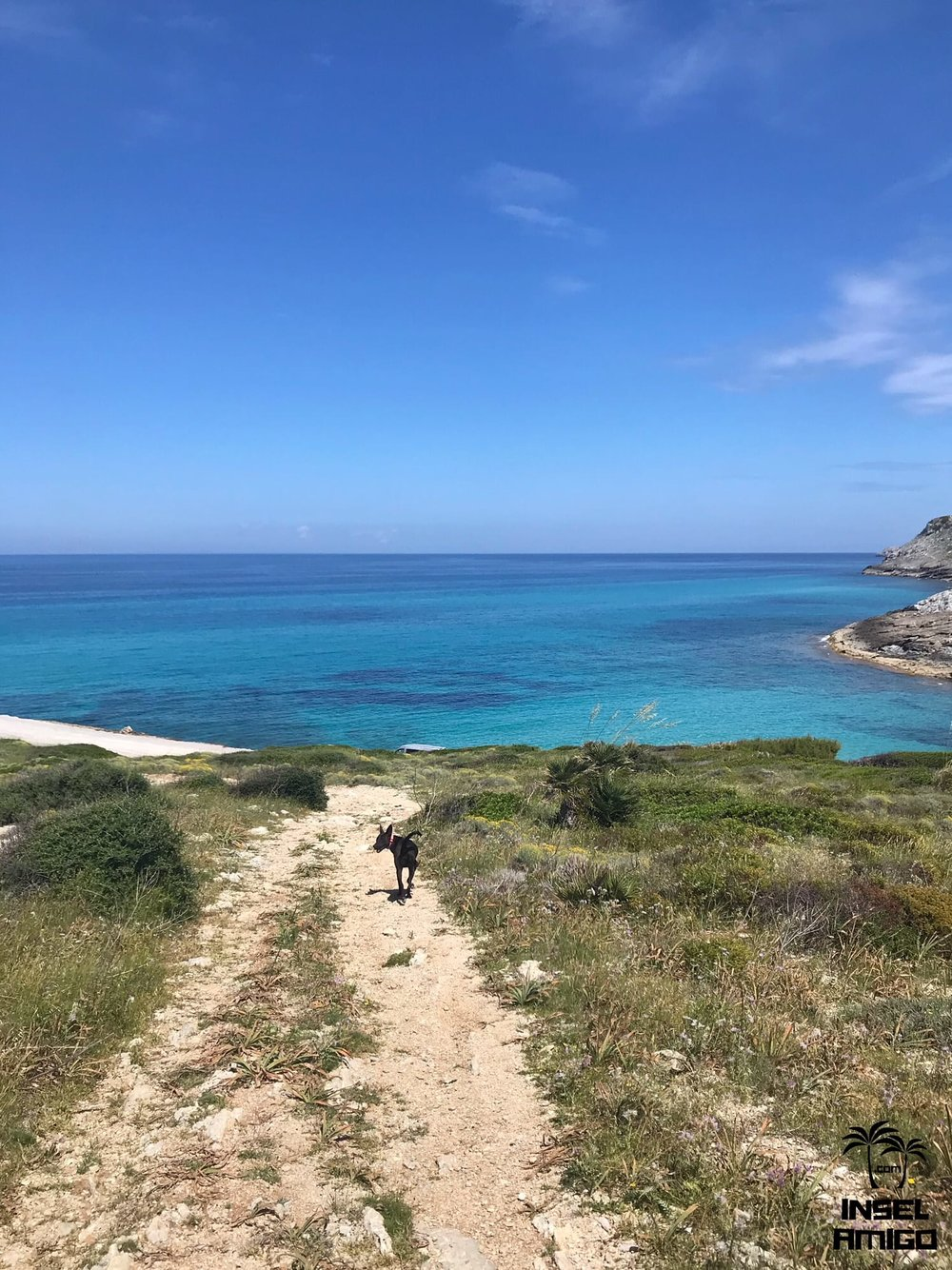 Der Weg hinunter zur Cala Mitjana