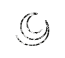 Symbole-ClaraJasmine-Noir-dentellevectorisee (1) logo (1).png