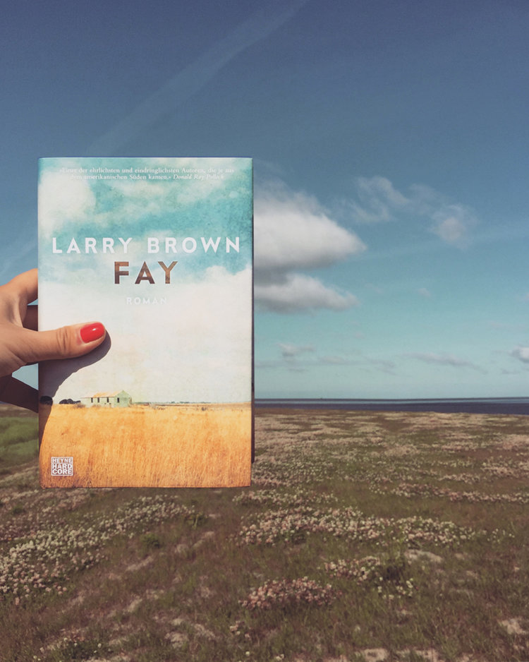 Larry Brown – Fay  Rätselhaft und poetisch zugleich ist der Roman über die bildhübsche 17-jährige Fay, die unerfahren und ungebildet ihrem gewalttätigen Vater entflieht. Äußerst interessante Erzählart, leider mit ein paar Längen, aber dennoch ein Lesemuss.