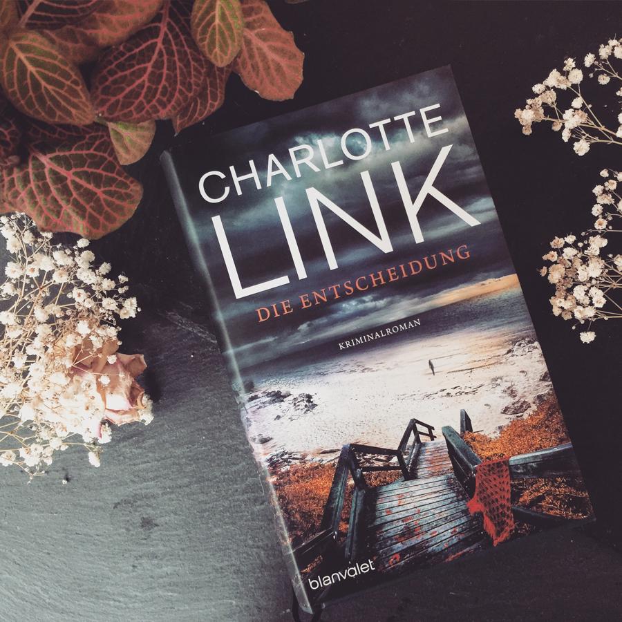 Charlotte Link – Die Entscheidung  Eine einzige Entscheidung kann dein ganzes Leben verändern, diese Tragkraft bekommt auch Simon zu spüren als er der völlig verwahrlosten Nathalie seine Hilfe anbietet.Spannende Idee, leider nicht ganz so spannend umgesetzt.