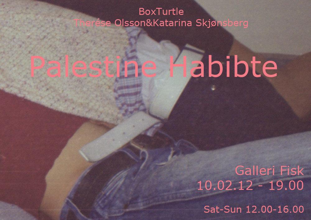 poster_boxturtle_palestine_habibte.jpg