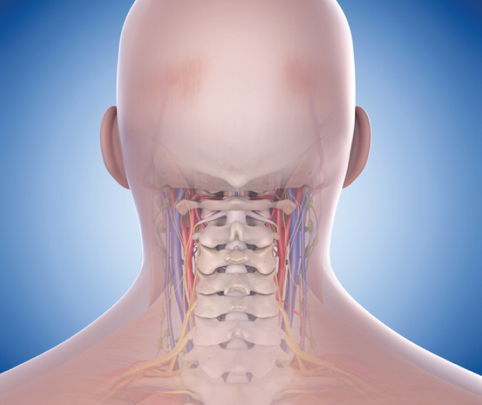 Why It Works - Medical studies have proven the benefit  neck alignment has on overall wellness.When your neck is properly supported, circulation is improved, muscles are relaxed, and breathing is unobstructed. All of these benefits reduce pain and promote better sleep.And better sleep makes a healthier and happier you!