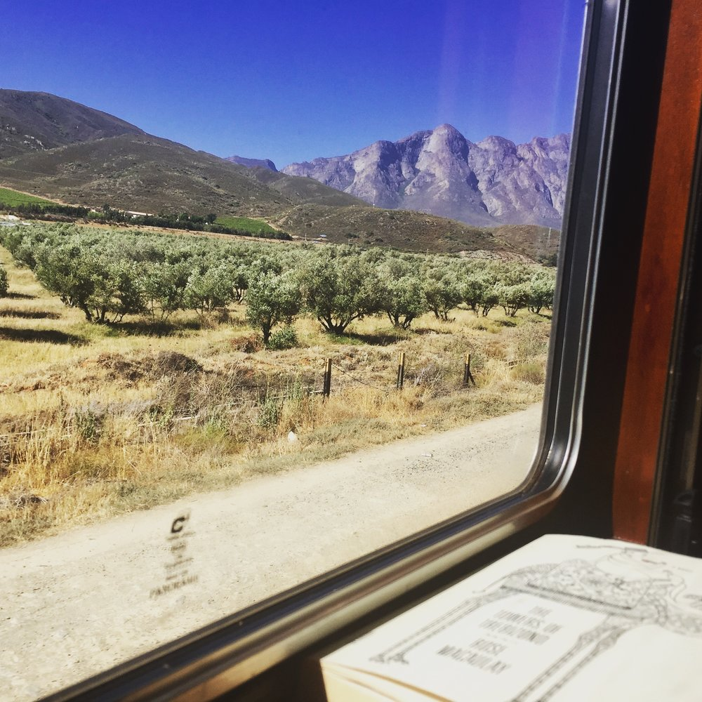 A book and a view and a train. The travel trinity.