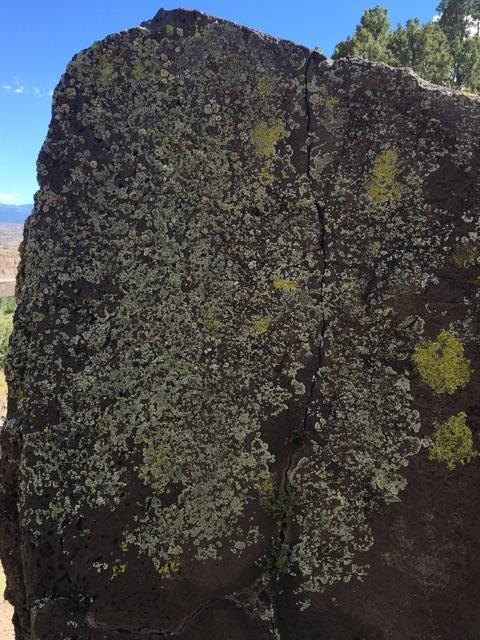 Moss Rock