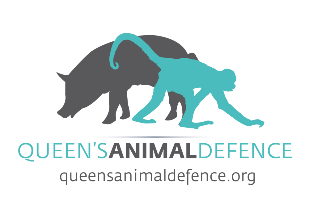 Queens Animal Defence.png