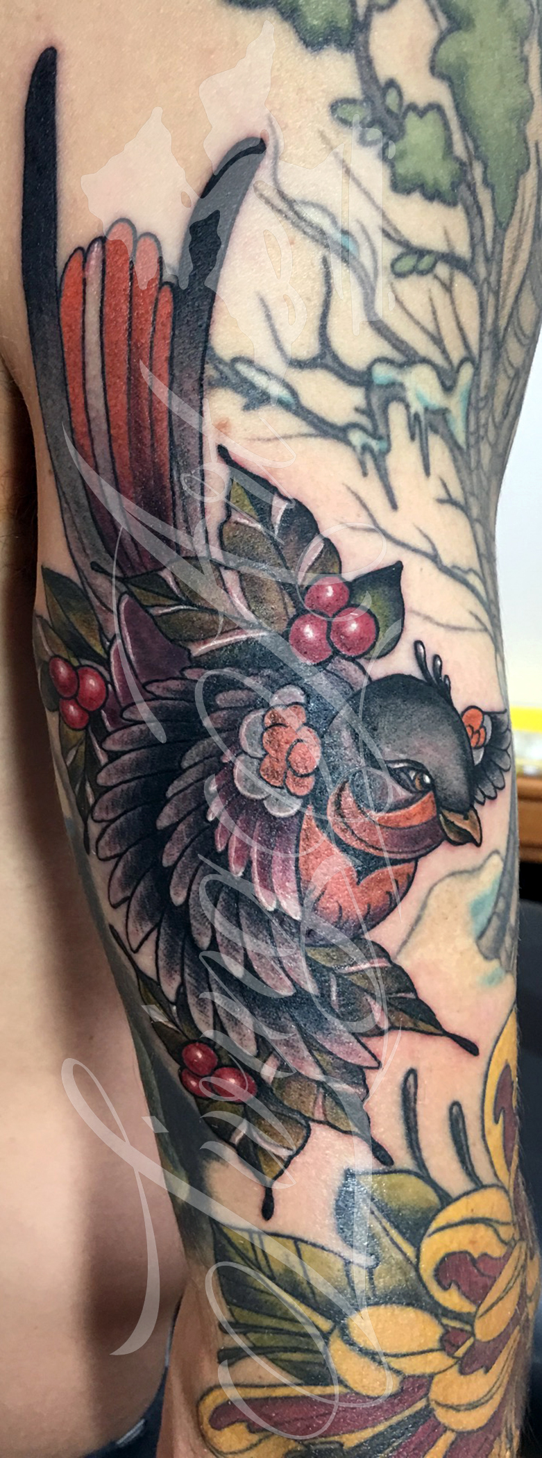 chris owen tattoo_neo traditionla bird tattoo_robin tattoo_sparrow tattoo.jpg
