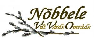 NVV_loga-300x124.png