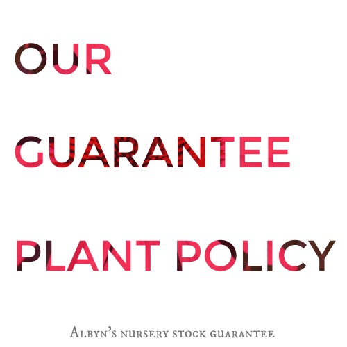 Plant Policy Guarantee