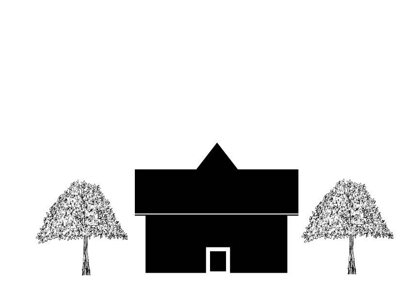 spreading ornamental tree 20 to 35 feet tall-01.jpg