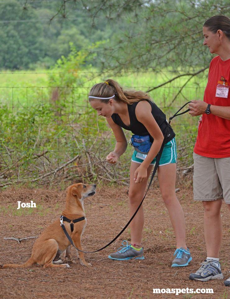 volunteer6.jpg