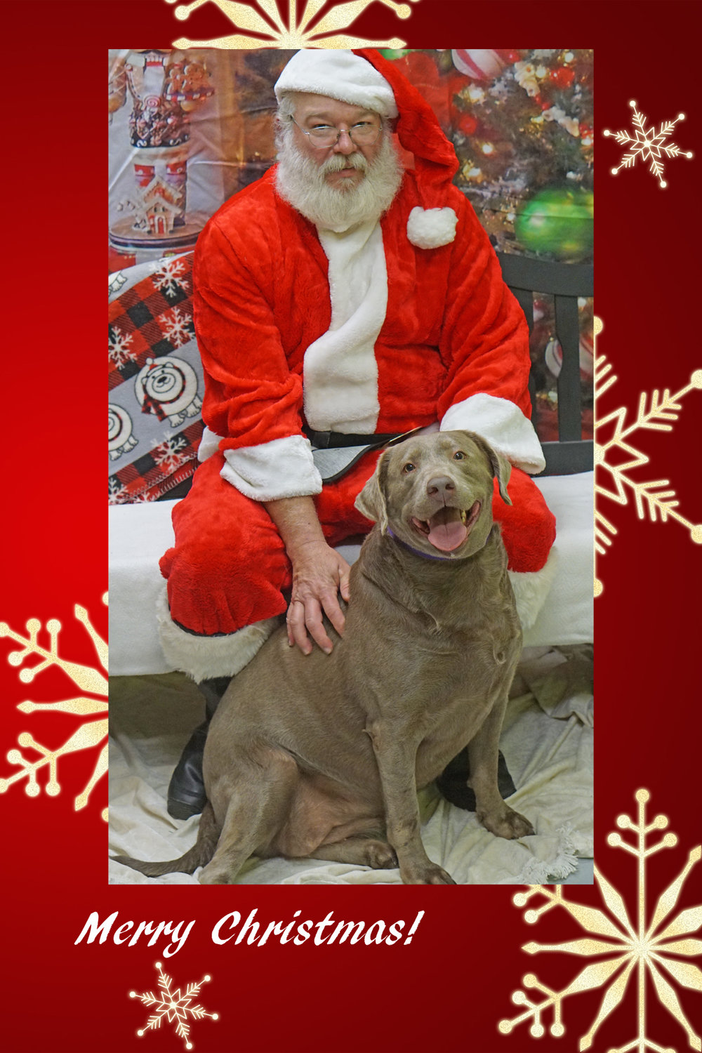 Santa Paws 2017 - This year was as fun as previous years with Santa Paws! We were able to witness the excitement in many children's eyes once they saw Santa! Remember, this is an annual fundraiser, so every year we have photos with Santa and fun games! This year, we even had our very own Movie Theater which featured the Christmas Hit Movie, Polar Express, and we offered delicious popcorn! Hopefully, we will see you next year!!!
