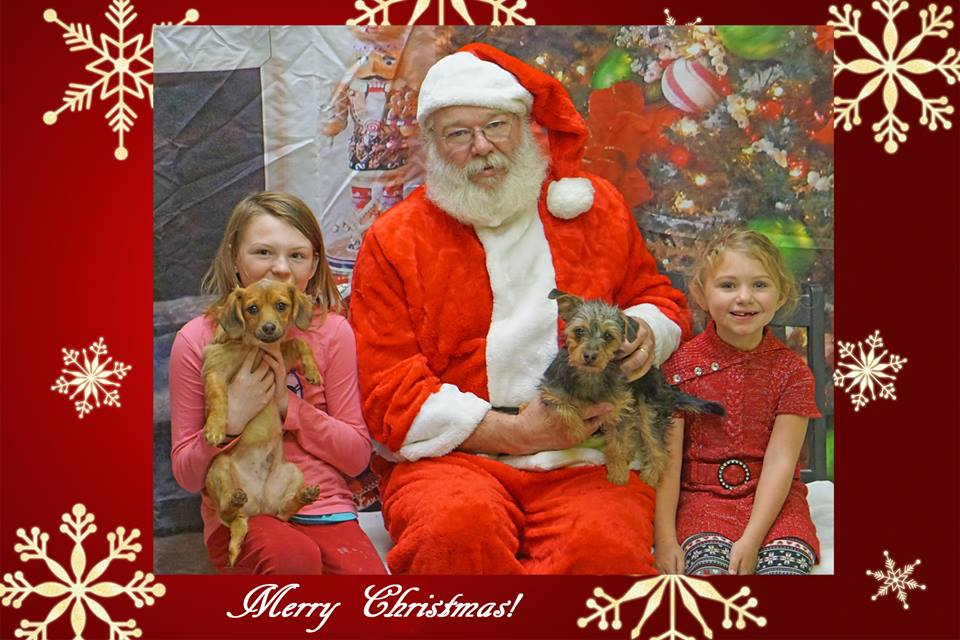 Santa and kids and dogs.jpg