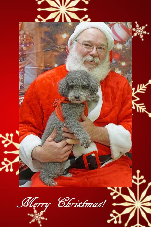 Santa and poodle.jpg