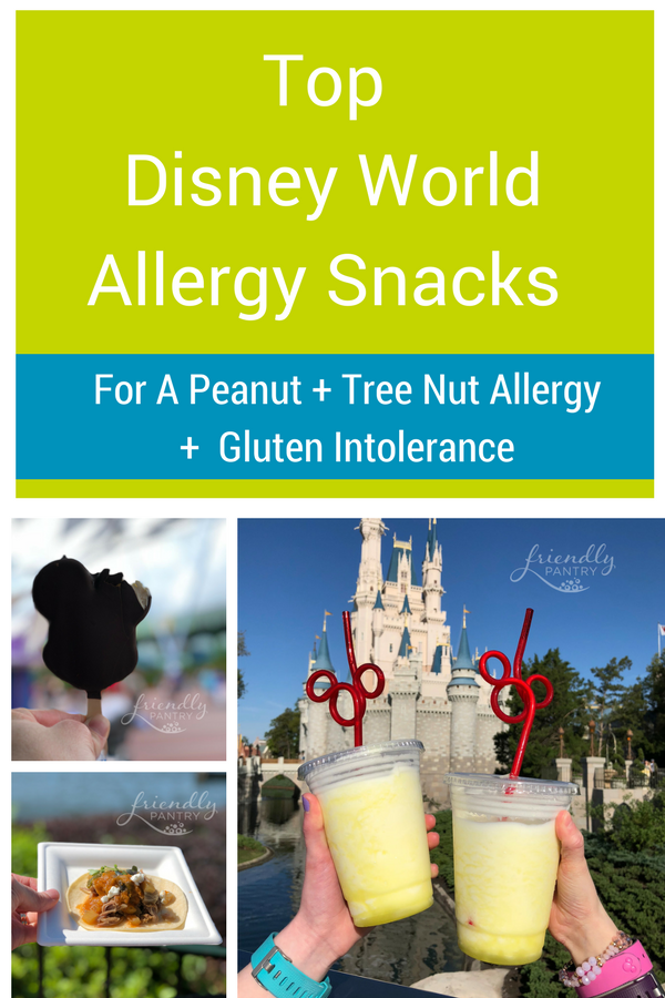 Snacks with peanut allergy, tree nut allergy and gluten free disney world