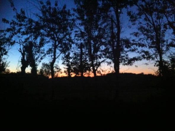 sunset0.jpg