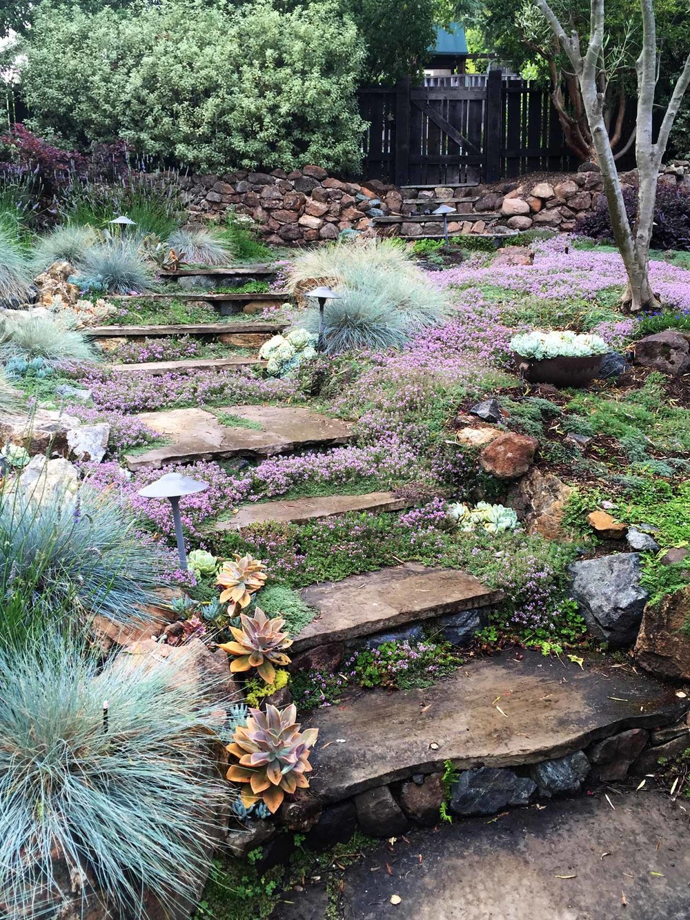 Flagstone stairway & path  Rockridge, Oakland