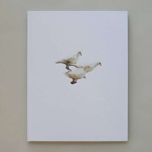 Wild Pigeon Carolyn Drake Self Published, 2014