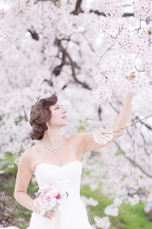 (Photos: Yuhino Suzuki)