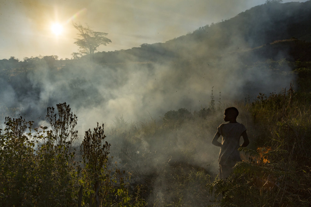 JEN GUYTON  www.jenguyton.com  |  @jenguyton   A girl stands by as her family's farm burns in preparation for crop planting on Mount Gorongosa, which is a part of Gorongosa National Park, Mozambique. The Mountain boasts the southernmost fragment of ancient Congolese rainforest, and is home to a number of endemic species. Fire, which is overwhelmingly man-made here, is a major threat to this ecosystem, which naturally has very low fire frequency. The mountain has been a hotspot of civil conflict since the Mozambican Civil War that raged from 1975-1992. For the last decade or so, it has been the home base of RENAMO, the rebel army. Meanwhile, there are 10,000 people subsistence farming on the mountain's poor rainforest soil. To make that living, they must cut a new patch of forest each year. In 2013, less than half of the forest remained; since then, the clearing has accelerated as people are forced into the forest from the open lowlands when armed conflict between RENAMO and government forces flares.