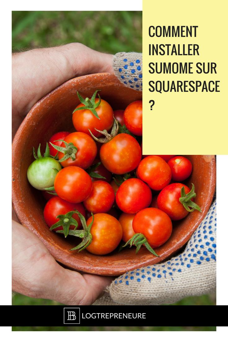 Comment installer barre partage SumoMe sur Squarespace