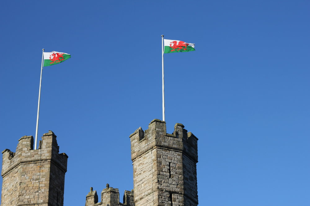 I think the best part of Wales is the fact that they have a dragon on their flag. Which automatically makes them winners.