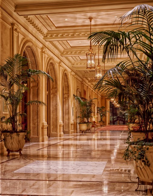 sheraton-palace-hotel-lobby-architecture-san-francisco-53464.jpeg