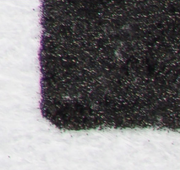 Sigma 105mm f2-8 EX OS Macro 200% pixel view at f/5.6