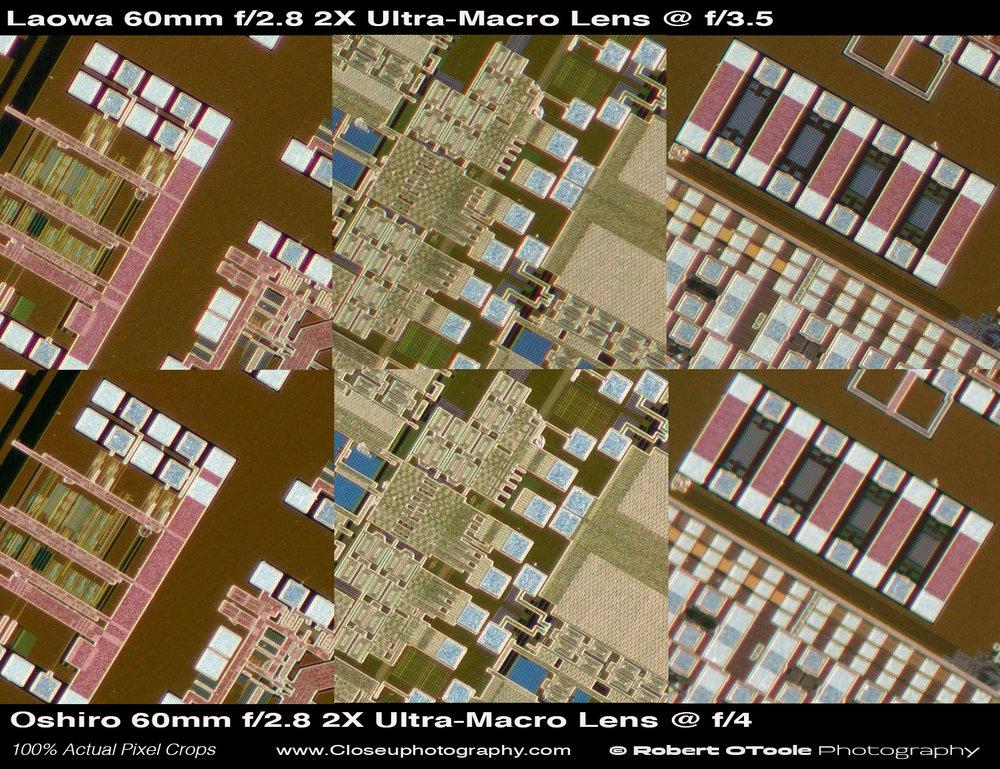 Laowa-vs-Oshiro-2X-test-Closeuphotography-Robert-OToole-Photography.jpg