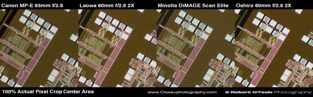 2x-test-100-percent-center-crops-closeuphotography.com-Robert-OToole-Photography.jpg