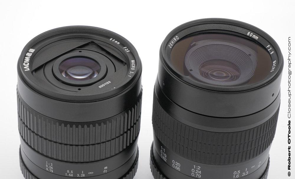 Oshiro-and-Laowa-60mm-lenses-Closeuphotography-Robert-OToole-Photography.jpg