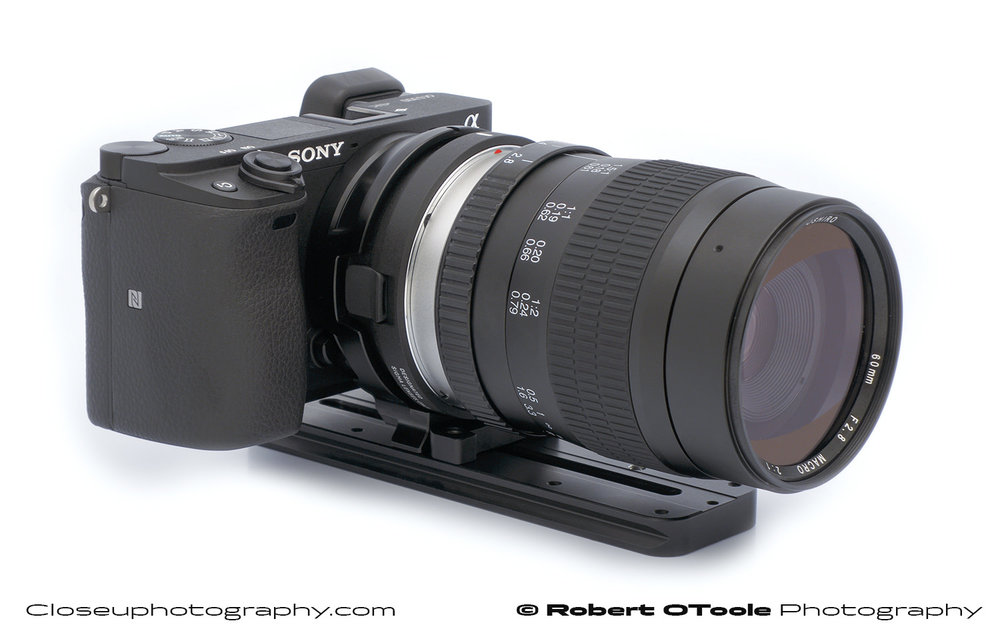Sony A6300 with a Sigma MC-11 EOS to E-mount adapter, with a Small Rig MC-11 tripod adapter