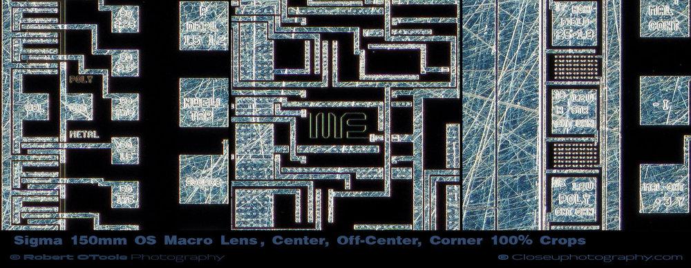 Sigma-150mm-OS-lens-100-percent-crops-Closeuphotography.jpg