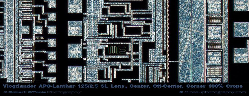 VOIGTLANDER-APO-LANTHAR-125MM-F2.5-LENS-100-percent-crops-Closeuphotography.jpg