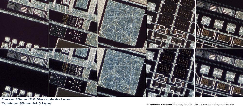 Canon-35MM-F2.8-Macrophoto-Lens-vs-Tominon-35mm-f4.5-Lens-100-percent-crops.jpg
