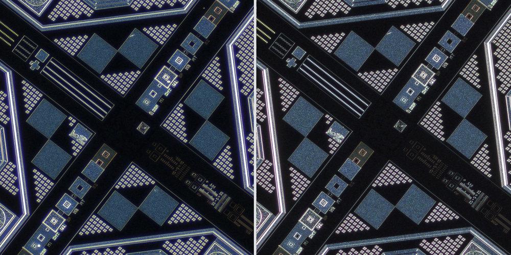 Nikon LU Plan Fluor 5X/0.15 BD Objective vs Sigma 150 f2.8 OS + Xenon 28mm f2 Line Scan Lens 100% Center Crops