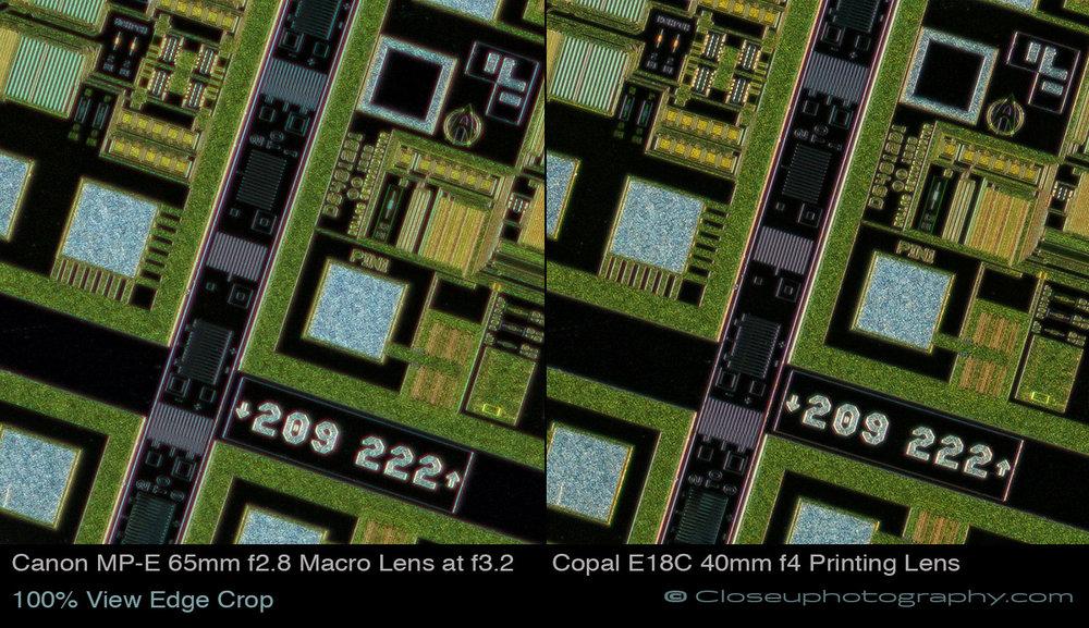 100-percent-view-edge-crop-Canon-MPE-65-vs-Copal-E18C-40mm-at-3.4x-www-Closeuphotography-com.jpg