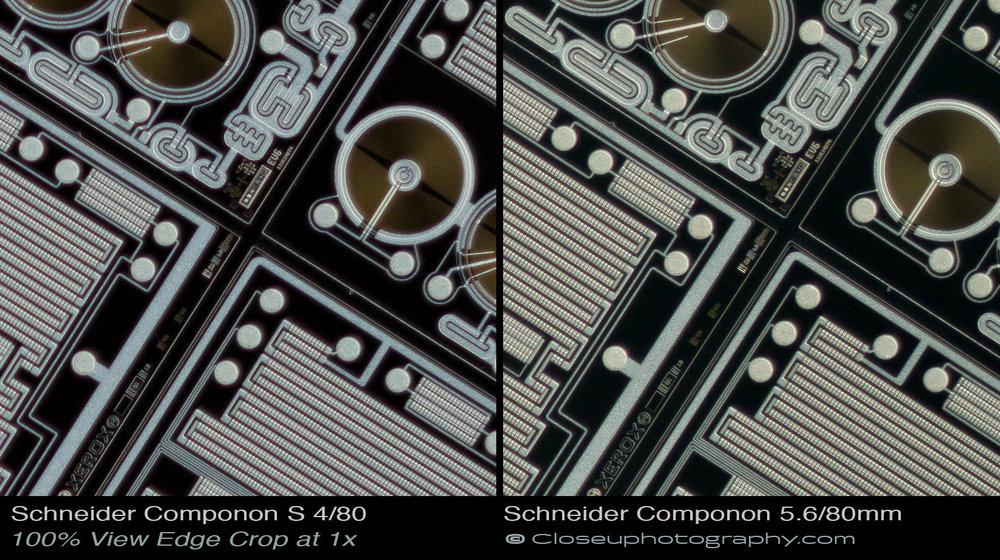 Edge-100-percent-crops-Schneider-Componon-S-80mm-f4-Lens-vs-Schneider-Componon-80mm-f5.6-Lens-www-closeuphotography-com.jpg