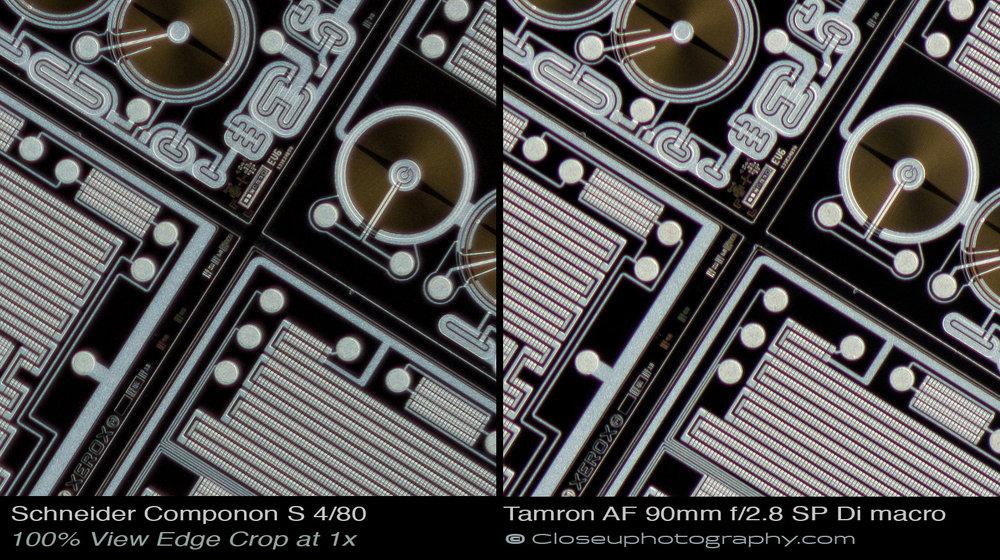 Edge-100-percent-crops-Schneider-Componon-S-80mm-f4-Lens-vs-Tamron-AF-90mm-f:2.8-SP-Di-macro-lens-www-closeuphotography-com.jpg