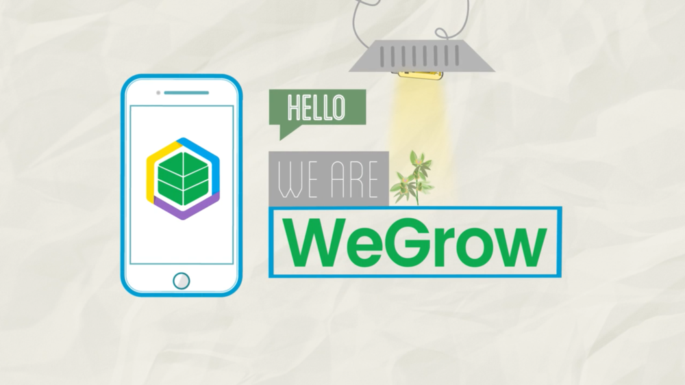 WeeGrow App Animation
