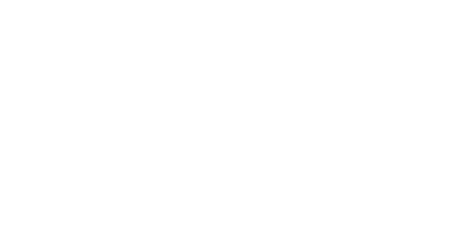 AION ENTERTAINMENT