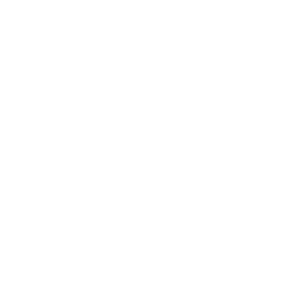 Aion-LogoWhite-[Converted]1a.png