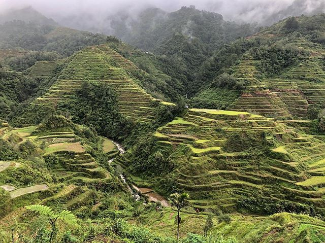 SE Asia is a natural beauty. . . . . . . . #itsmorefuninthephilippines #banaue #banauericeterraces #rice #riceterraces #southeastasia #momsmotherland
